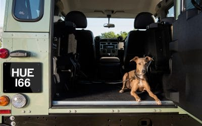 LAND ROVER GIVES BACK TO FOUR-LEGGED FRIENDS IN NEED